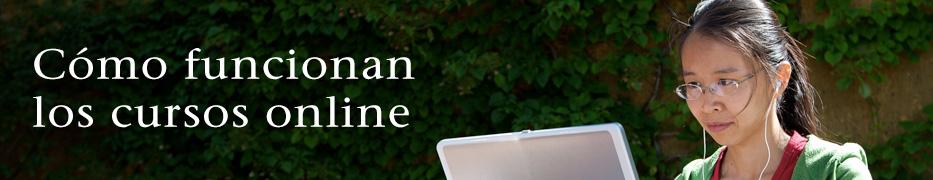 Cómo funcionan los cursos online